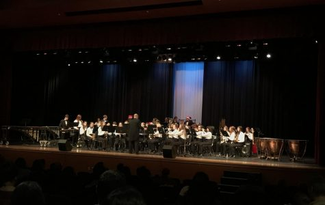 Beary Unique Talent at the OHS Band Winter Concert