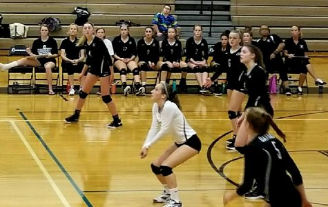 Volleyball Serves a Sweeping Home-Opener