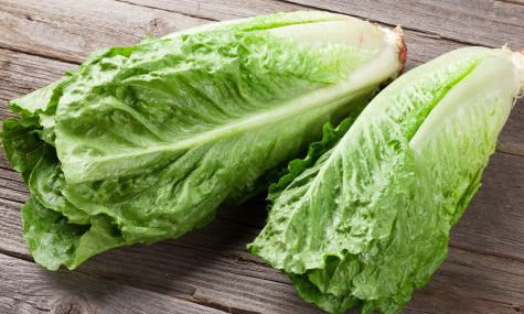 Romaine Lettuce Safety Warning