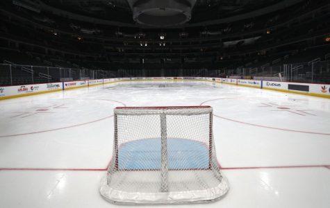 NHL Season Suspended