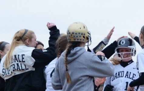 Softball's Teamwork
