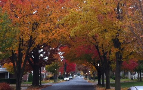 Fall Into Frederick