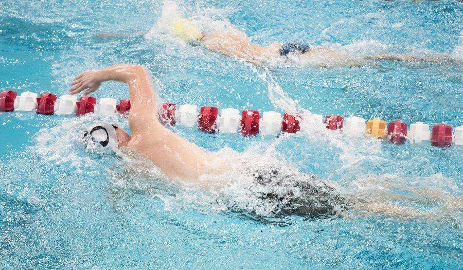 Just Keep Swimming: The 2015-2016 Swimming and Diving Season