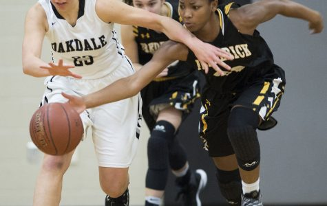 2016-2017 Girl's Basketball Season Recap