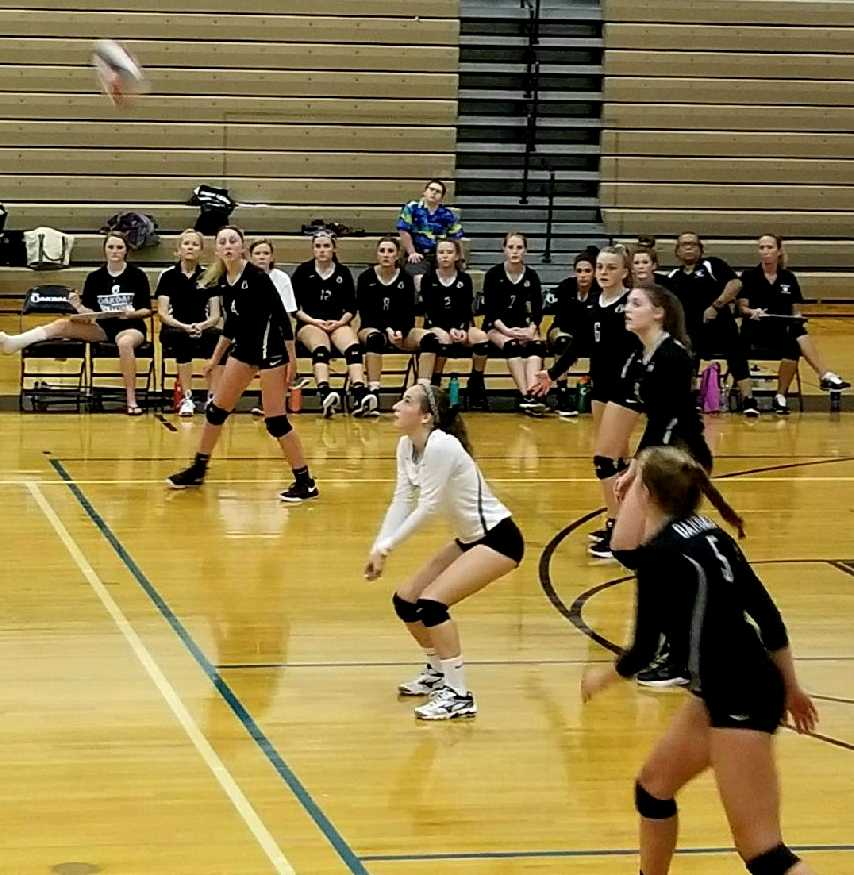 Volleyball+Serves+a+Sweeping+Home-Opener