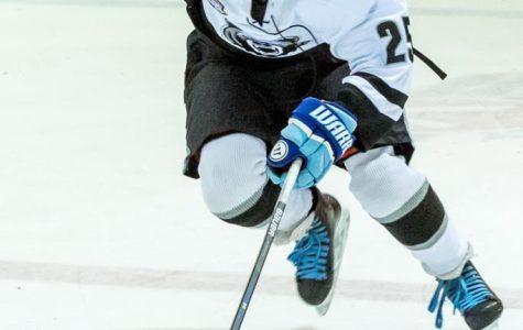 Oakdale Ice Hockey 2019-2020 Season Preview