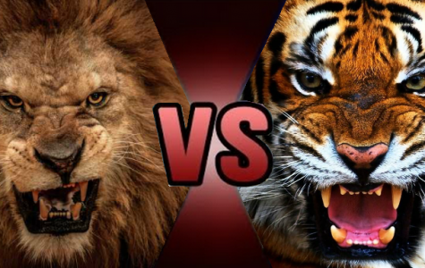Animal Kingdom Smackdown Week 2 features two big cats to determine who the real king of the jungle is.